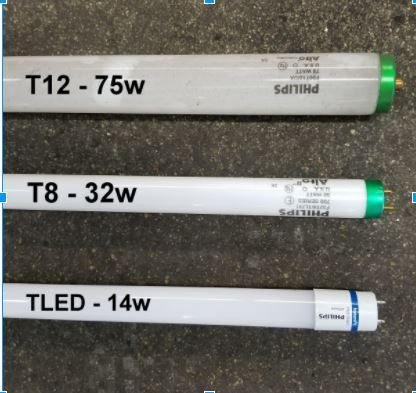 T12 T8 and TLED linear bulb comparisons